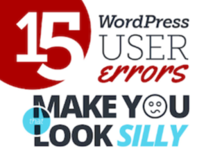 Wordpress User Error Infographic
